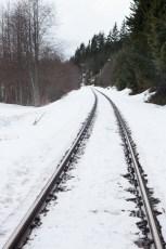 Whistler Mountaineer Tracks