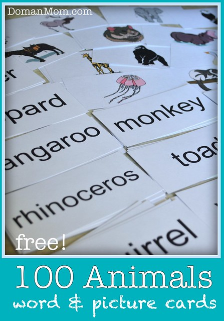 100 Free Animal Picture and Word Flash Cards
