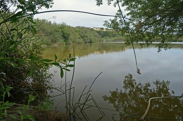 2012-07-25 Oso Flaco Lake hike-05_edited-1
