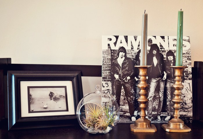 Tillandsia Air Plant Glass Globe Terrarium on Shelf with ramones album and candles