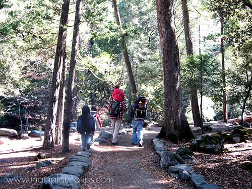 Walking in Yosemite