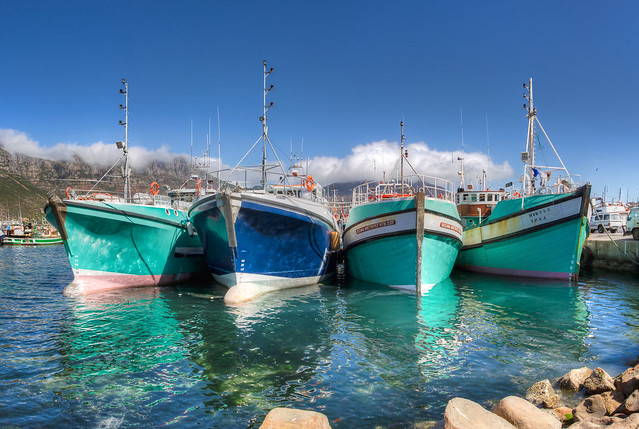 Fishing boats of Houtbay