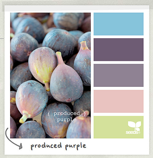 8 Palettes from Design Seeds