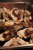 Tofino Oyster Festival
