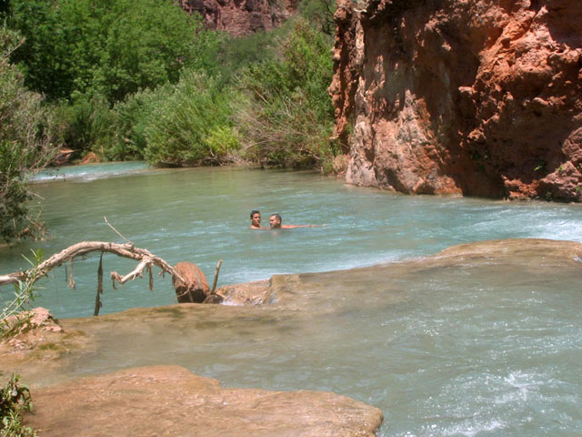 Swimming in the Havasu Creek