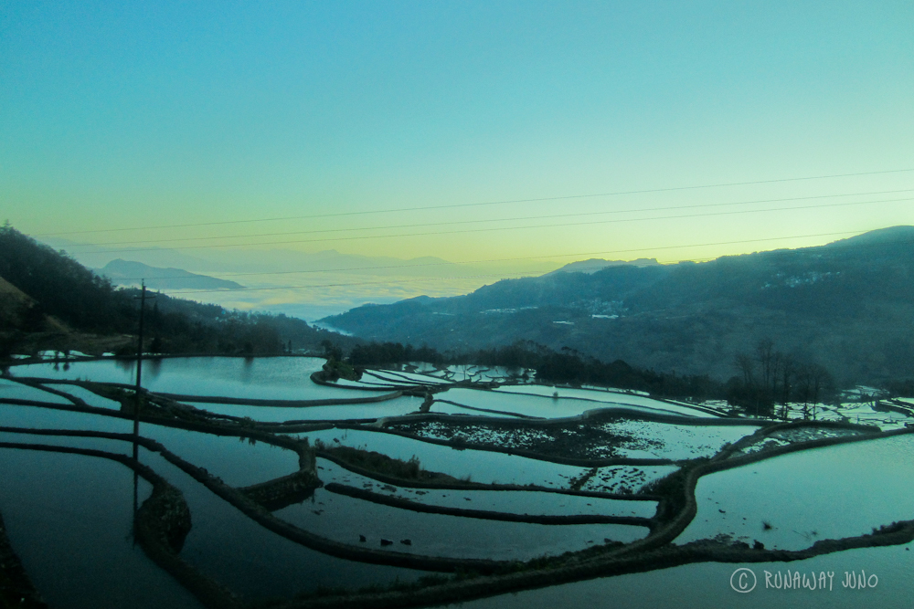 Rice Terrace in the sunrise