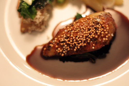 pigeon with mustard seeds