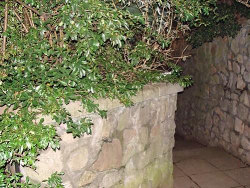 Jar No 261 in situ 02