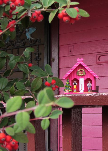pink weatherhouse