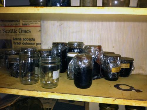 Shelf of canning horrors
