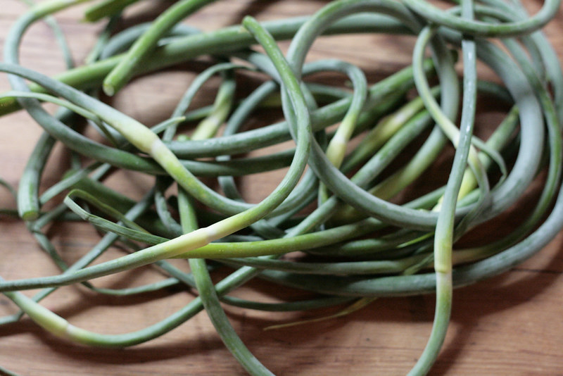 scapes