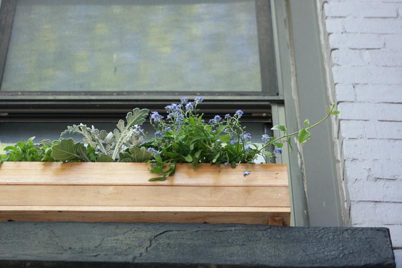 window box, from below