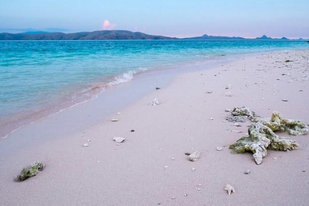 Pink sand beach. Komodo