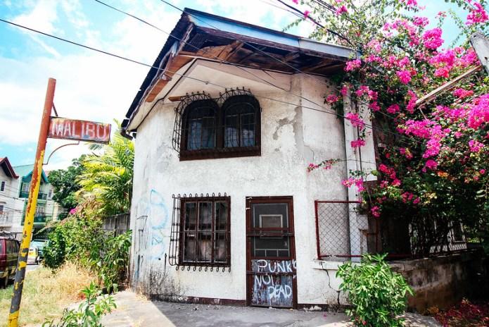 punk's not dead written on a house- 4-4