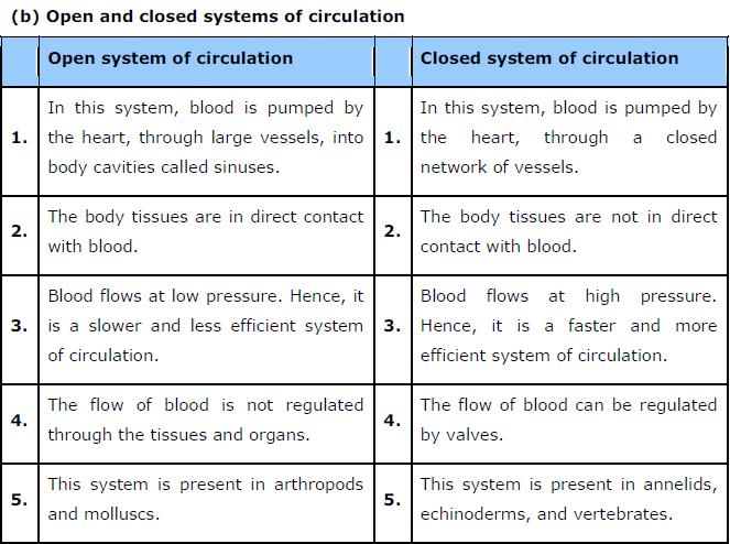NCERT Solutions Class 11th Biology: Chapter 18 Body Fluids and Circulation