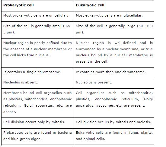 NCERT Solutions for Class 9th Science: Chapter 5 The Fundamental Unit of Life