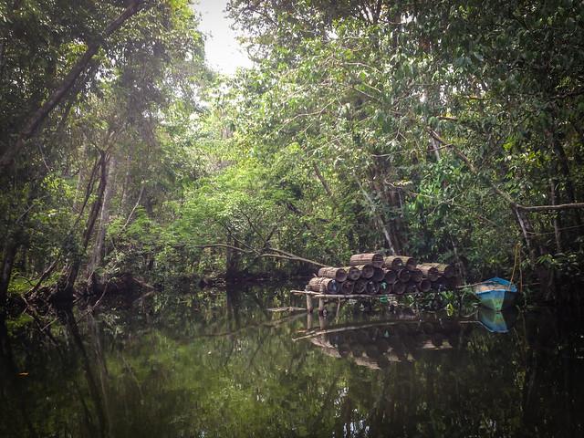 Exploring Rio Dulce-4