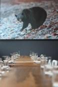 A Jeremy Koreski photo of a bear | Kuma Tofino