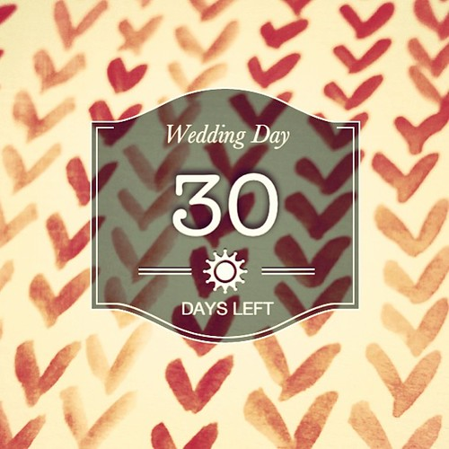 Woo!! Time to kick the party planning into 5th gear! #forthelove2013 #tiubride