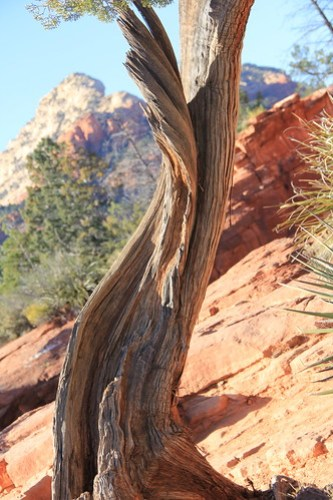 Sedona hiking + Valentines weekend 2015