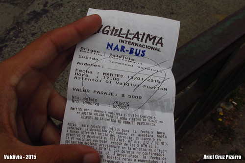 Pasaje de Bus - Igi Llaima