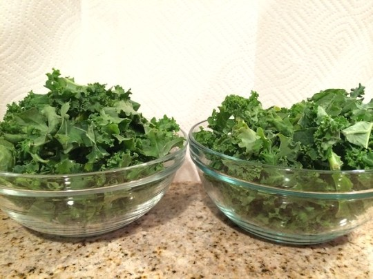 seven cups of kale, before