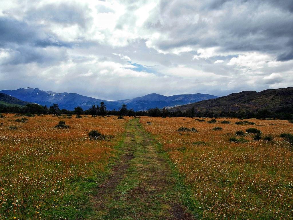 Flat grassland