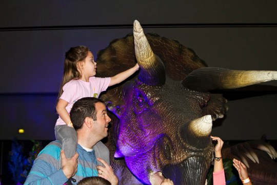 touching the triceratops