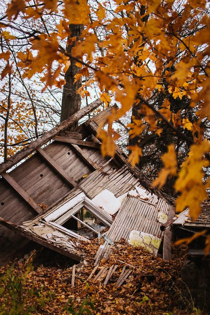 Abandoned Farm: Felled