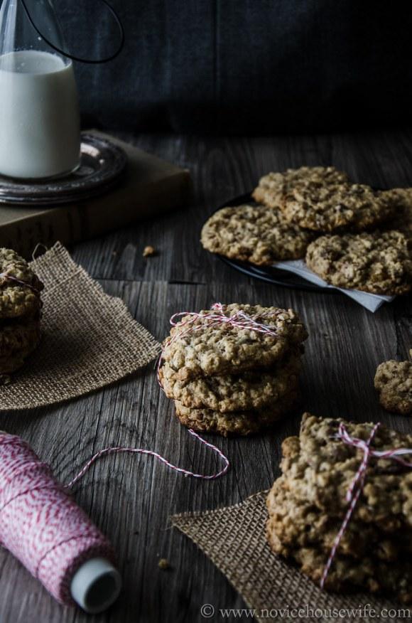 oatmeal pecan cookies-8