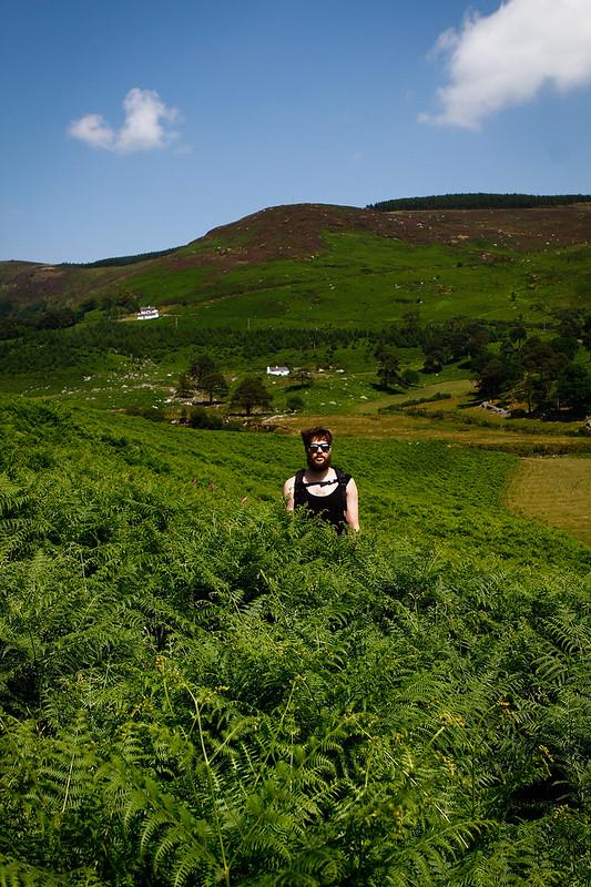 Tuukka13 - PHOTO DIARY - Hiking around Luggala and Lough Tay Wicklow, Ireland, 06.2013 -10
