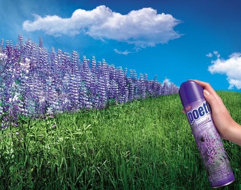 Poett - Flower