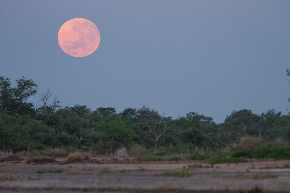 La luna llena se esconde en el horizonte pocos minutos después del amanecer sobre una de las tantas lagunas actualmente secas, en el campamento Laguna Capitán. (Tetsu Espósito).