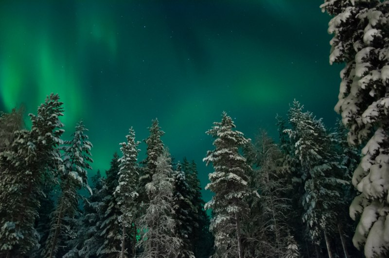 Aurora Borealis Levi Lapland