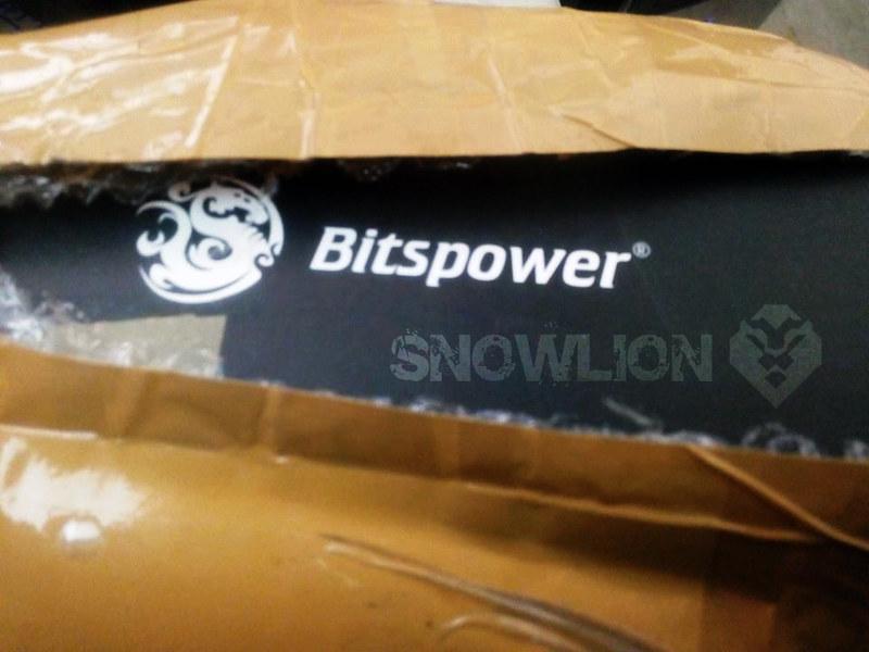 snowlion21