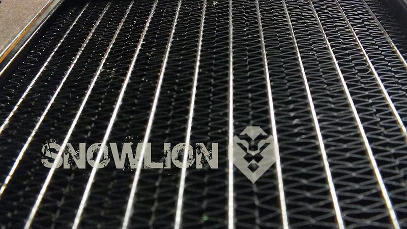 snowlion10