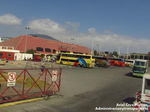 Ciktur - DRZH21 - Terminal La Serena