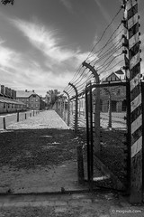 "Auschwitz • <a style=""font-size:0.8em;"" href=""http://www.flickr.com/photos/77968807@N00/8422745083/"" target=""_blank"">View on Flickr</a>"