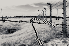 """Auschwitz • <a style=""""font-size:0.8em;"""" href=""""http://www.flickr.com/photos/77968807@N00/8423867118/"""" target=""""_blank"""">View on Flickr</a>"""