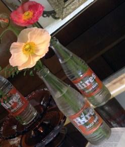 Bud Vases - by Mandy Majerik, AIFD, PFCI, HotHouse Design Studio in Birmingham, ALMandy-RootBeer-BudVase