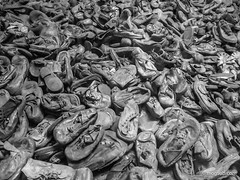 """Auschwitz • <a style=""""font-size:0.8em;"""" href=""""http://www.flickr.com/photos/77968807@N00/8423839110/"""" target=""""_blank"""">View on Flickr</a>"""