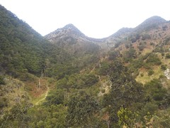 Vallées Madeira