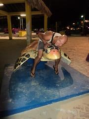 Jay on Turtle Statue