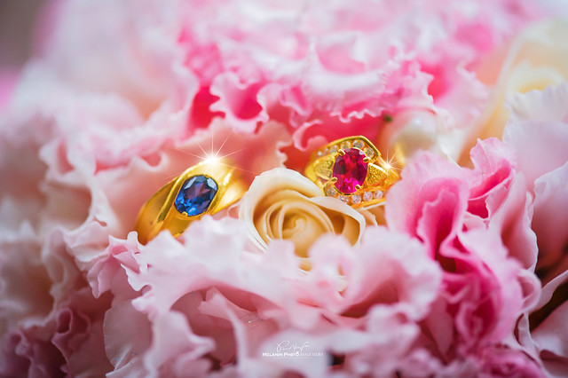 HSU-wedding-20141227--666