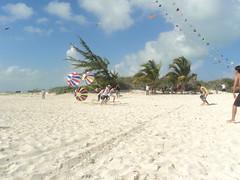 Kite Festival