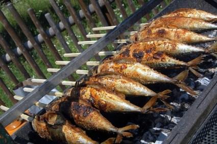 Steckerfische ~ literal fish (on) sticks!!