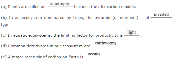 NCERT Solutions Class 12th Biology: Chapter 14 – Ecosystem Image by AglaSem