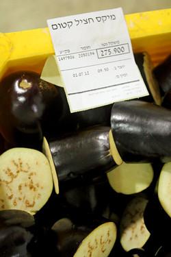 israeli eggplant