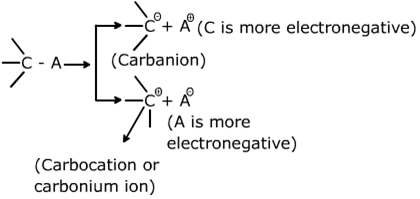 Class 11 Chemistry Notes General Organic Chemistry Image by AglaSem