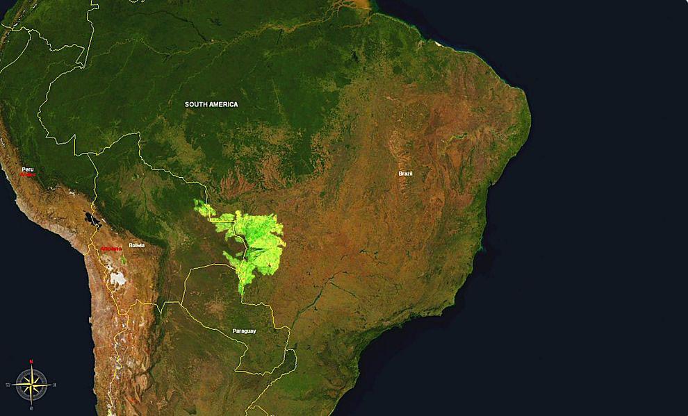 Una imagen satelital de la extensión del Pantanal que abarca los países de Brasil, Bolivia y Paraguay. (NASA Globe World Wind)